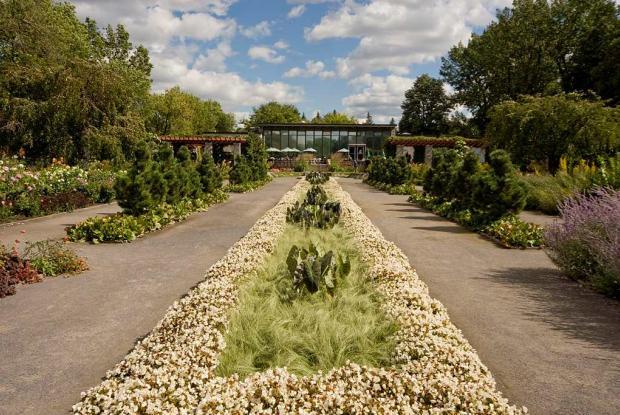 Jardin des vivaces