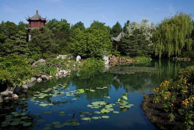 L ments du jardin de chine espace pour la vie for Image de jardin a imprimer
