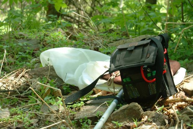 Matériel requis pour l'observation d'insectes.