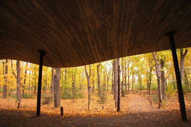 La texture du toit du Pavillon d'interprétation au Jardin des Premières-Nations