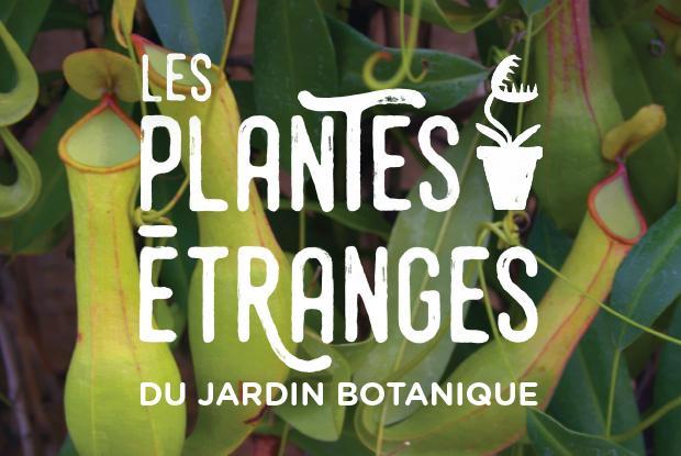 Les plantes étranges du Jardin botanique