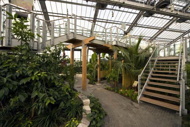 Tropical Food Plants Greenhouse.