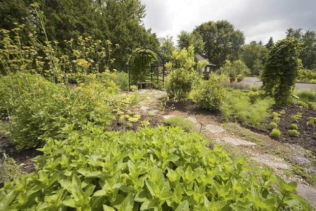 Ornemental garden
