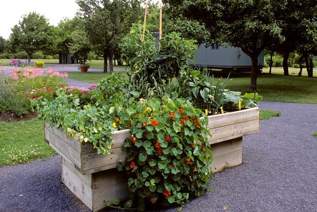 Un jardinage facile espace pour la vie for Potager sureleve