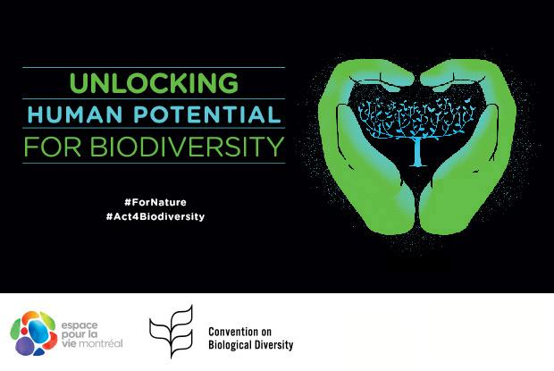 Unlocking Human Potential for Biodiversity