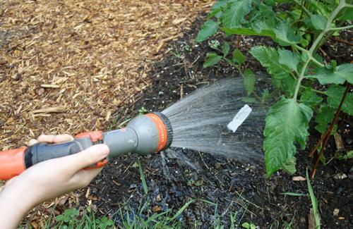 Manual watering
