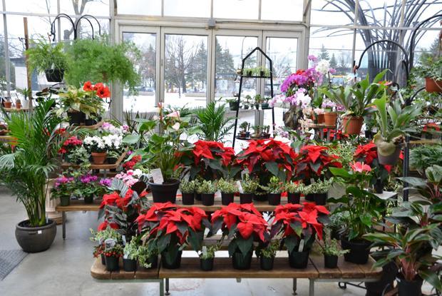Boutique du jardin botanique espace pour la vie - La boutique du jardin ...