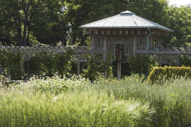 Jardin des plantes conomiques space for life for Biodome insectarium jardin botanique