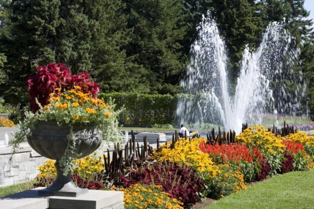 Vue des jardins d'accueil et de la fontaine.