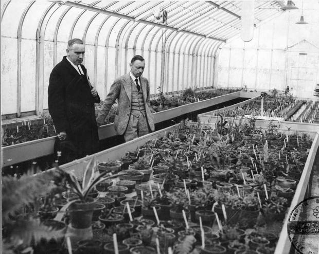 Henry Teuscher with Brother Marie-Victorin in Greenhouse A-1, 1936.