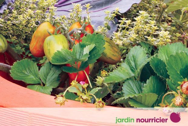 Jardin nourricier avec logo
