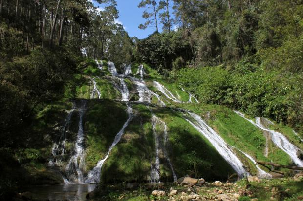 Waterfall at La Visite National Park in Haiti, where a number of Gesneriaceae live in the cloud forests.