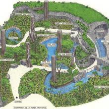 Carte de la forêt tropicale humide