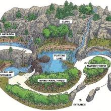 Laurentian Maple Forest map