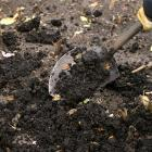 Compost added to a vegetable patch
