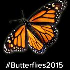 Box node - Butterflies 2015