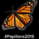 Box node -  Papillons 2015