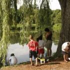 Camp de jour en écologie
