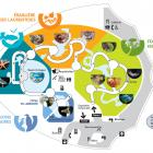 Carte des écosystèmes
