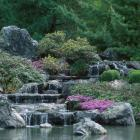 Cascade of water in the Japanese Garden