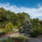 Vue générale du Jardin des arbustes - Fruticetum