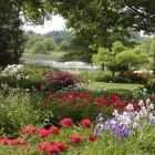 Jardin du ruisseau fleuri et étang.