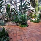 Molson Greenhouse