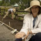 Stage en horticulture.