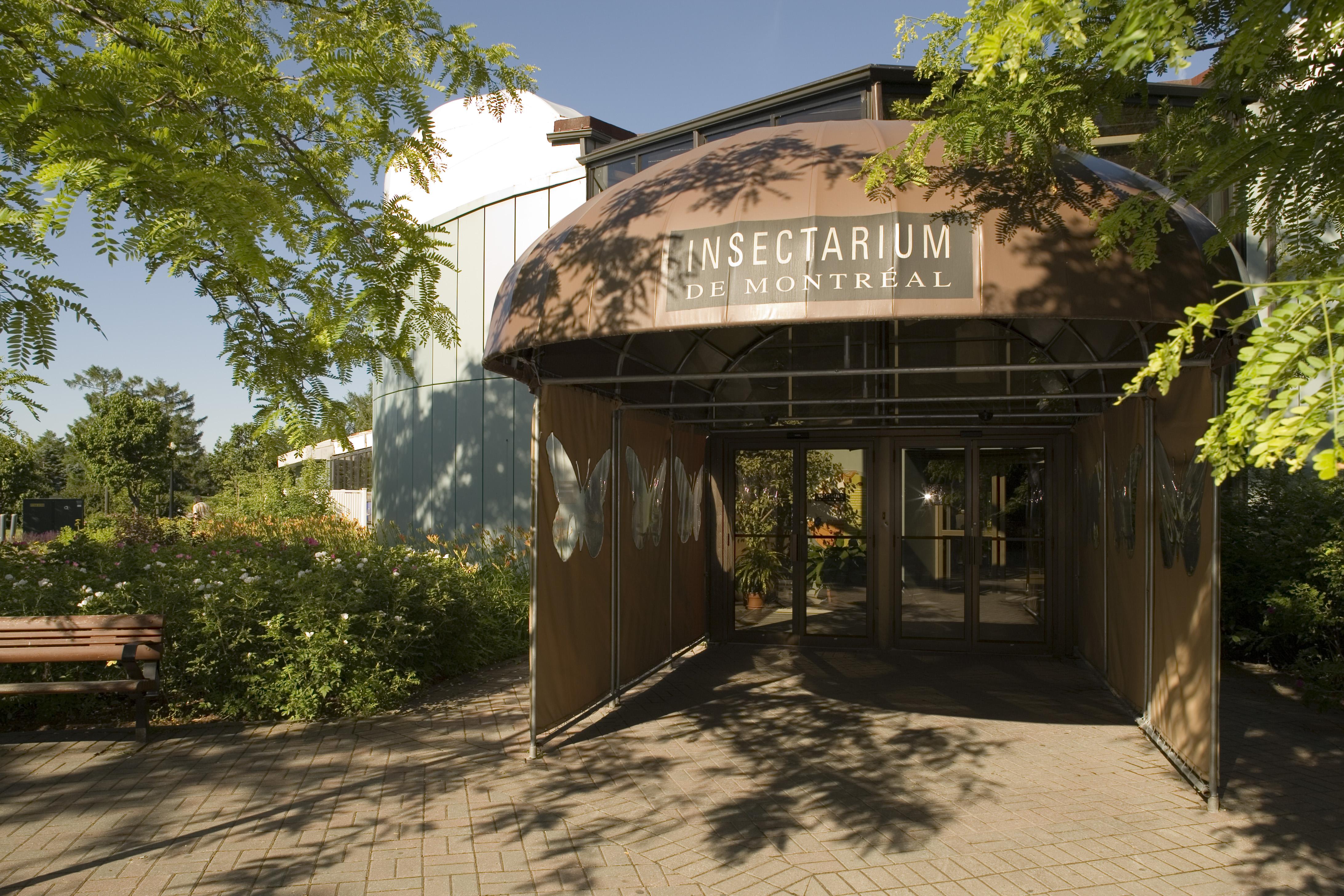 Historique de l 39 insectarium espace pour la vie for Jardin botanique montreal tarif